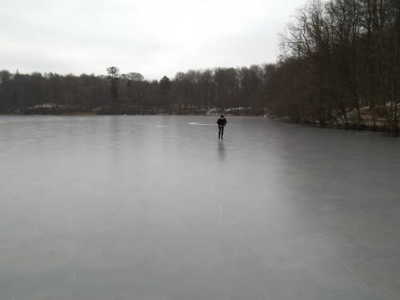 Løje sø ligger flot i skoven. (Foto: Henk, lørdag d. 28.01.2012, isen dengang 8 cm. nu +20?)